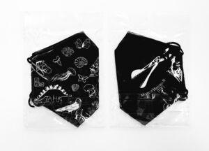 MASCARILLA REUTILIZABLE (82 LAVADOS) NEGRA - MUSEU UV D'HISTORIA NATURAL